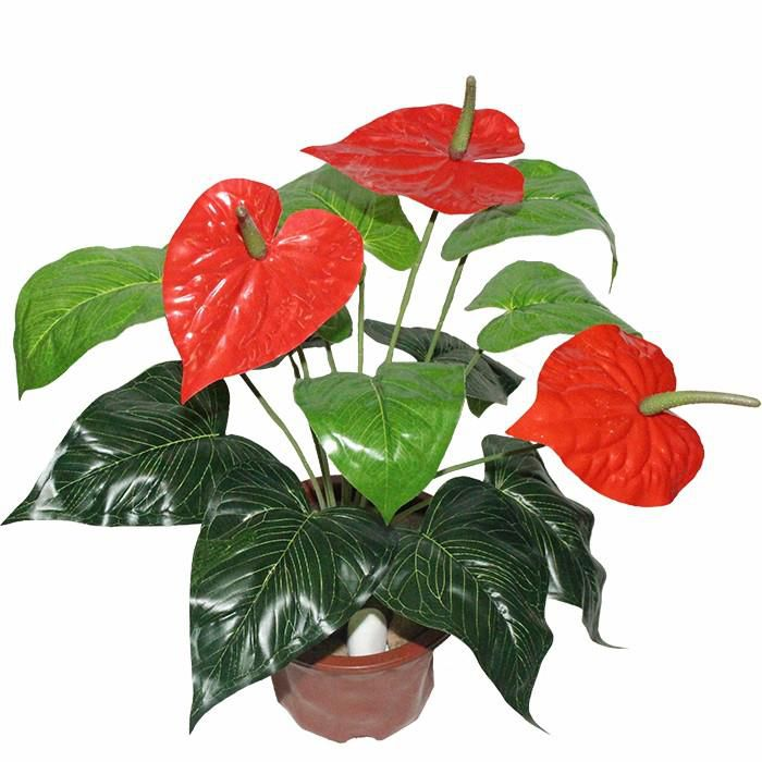 Artificial Anthurium Plant