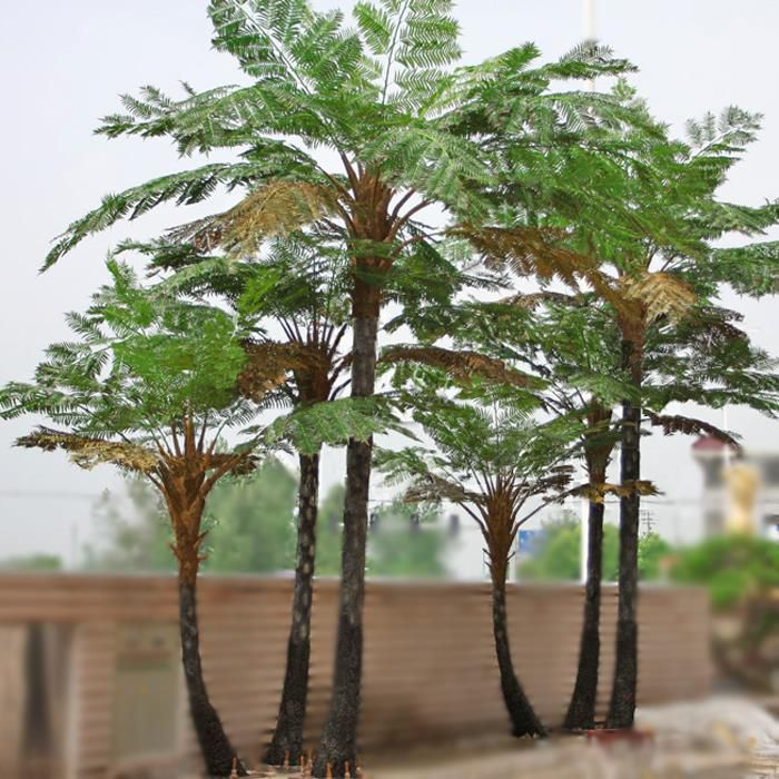 Artificial Landscaping Alsophila Spinulosa Trees