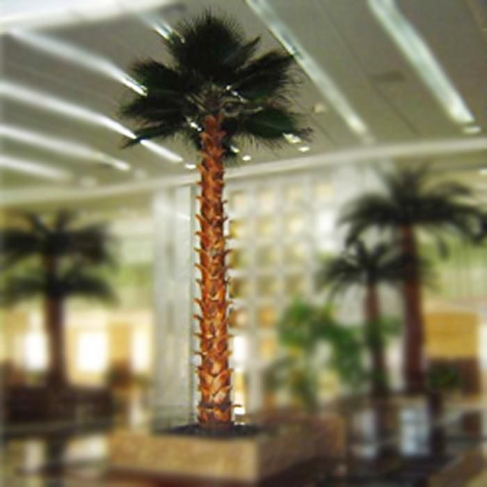 Large Indoor Landscaping Artificial Preserved Washingtonia Palm Tree